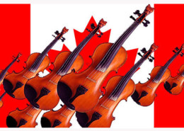 2016 fiddle banner