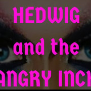 hedwig banner